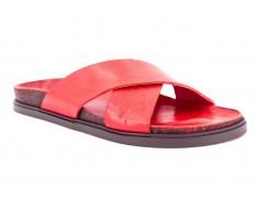 Brador 68-579 rosso